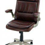 Scaune de birou ergonomice OFF256